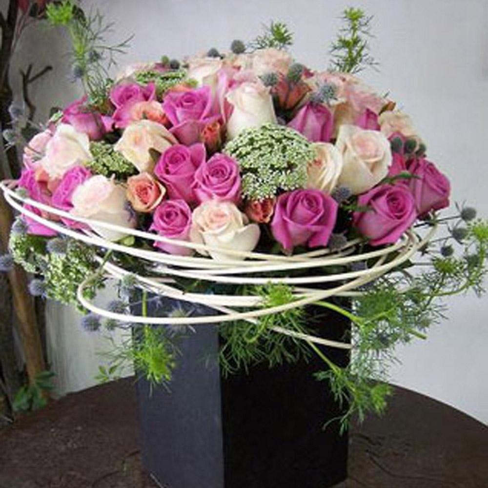 Armonia Rosa